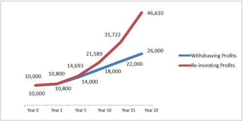 investing dividend vs withdrawing dividends